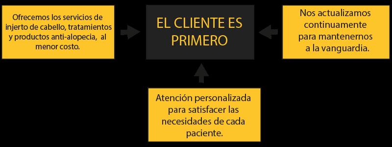 mision y vision fueracalvicie.mx
